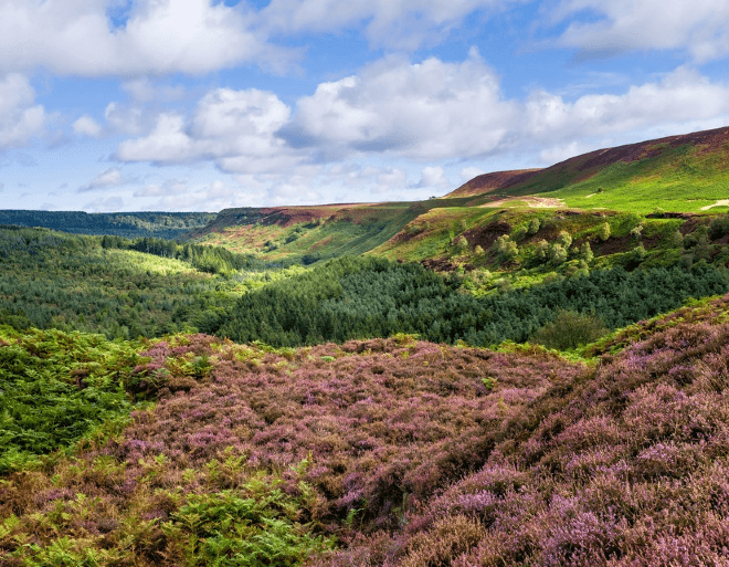 View over the Hole of Horcum