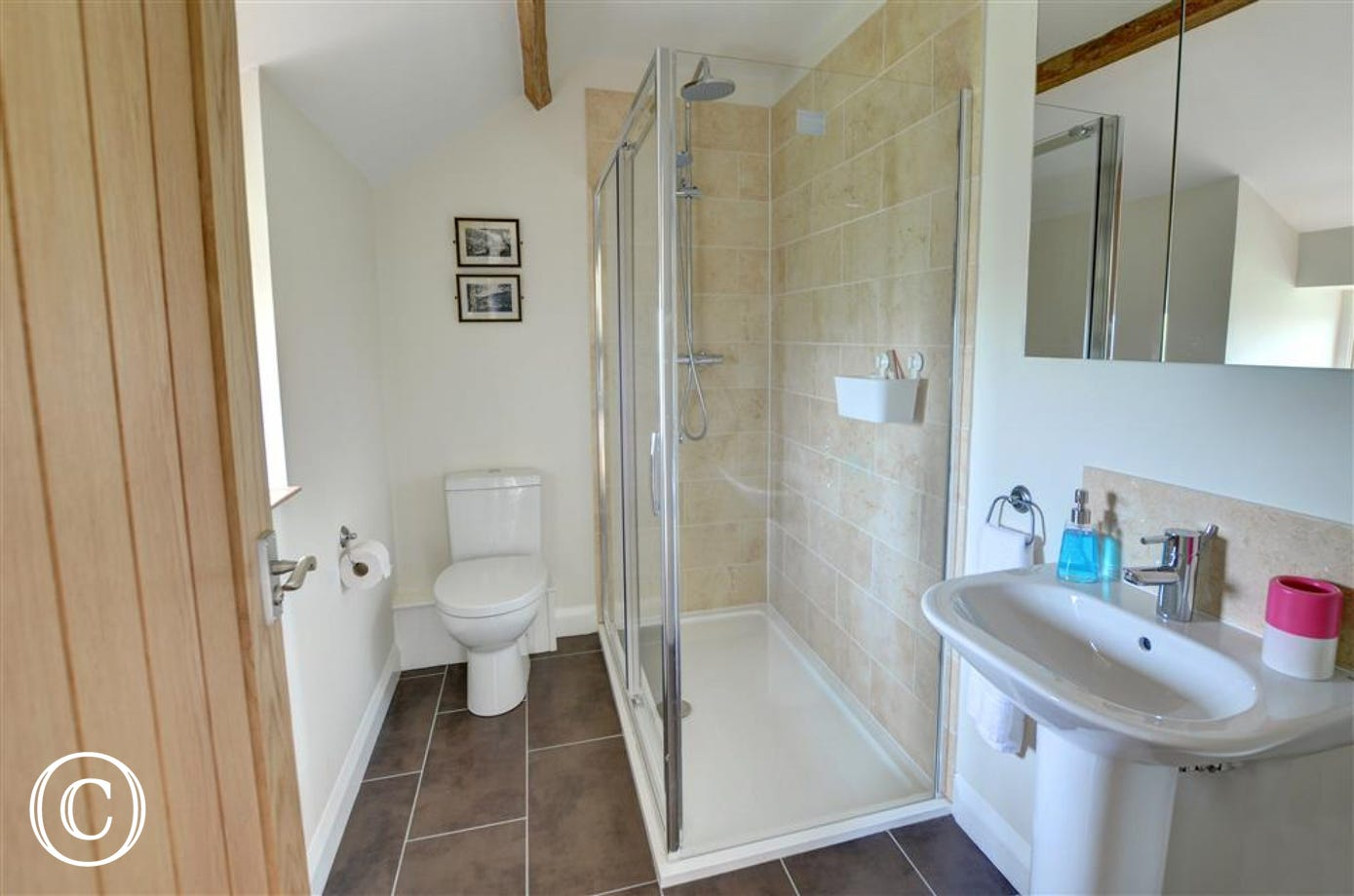 Bathroom has a large walk-in shower.