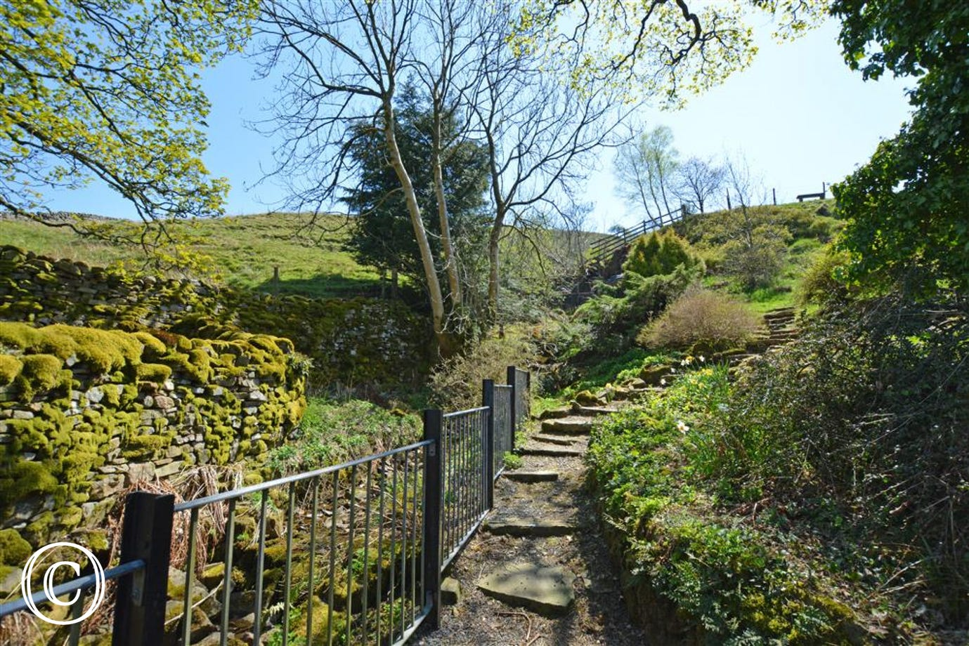 The garden steps by the stream at Ingheads