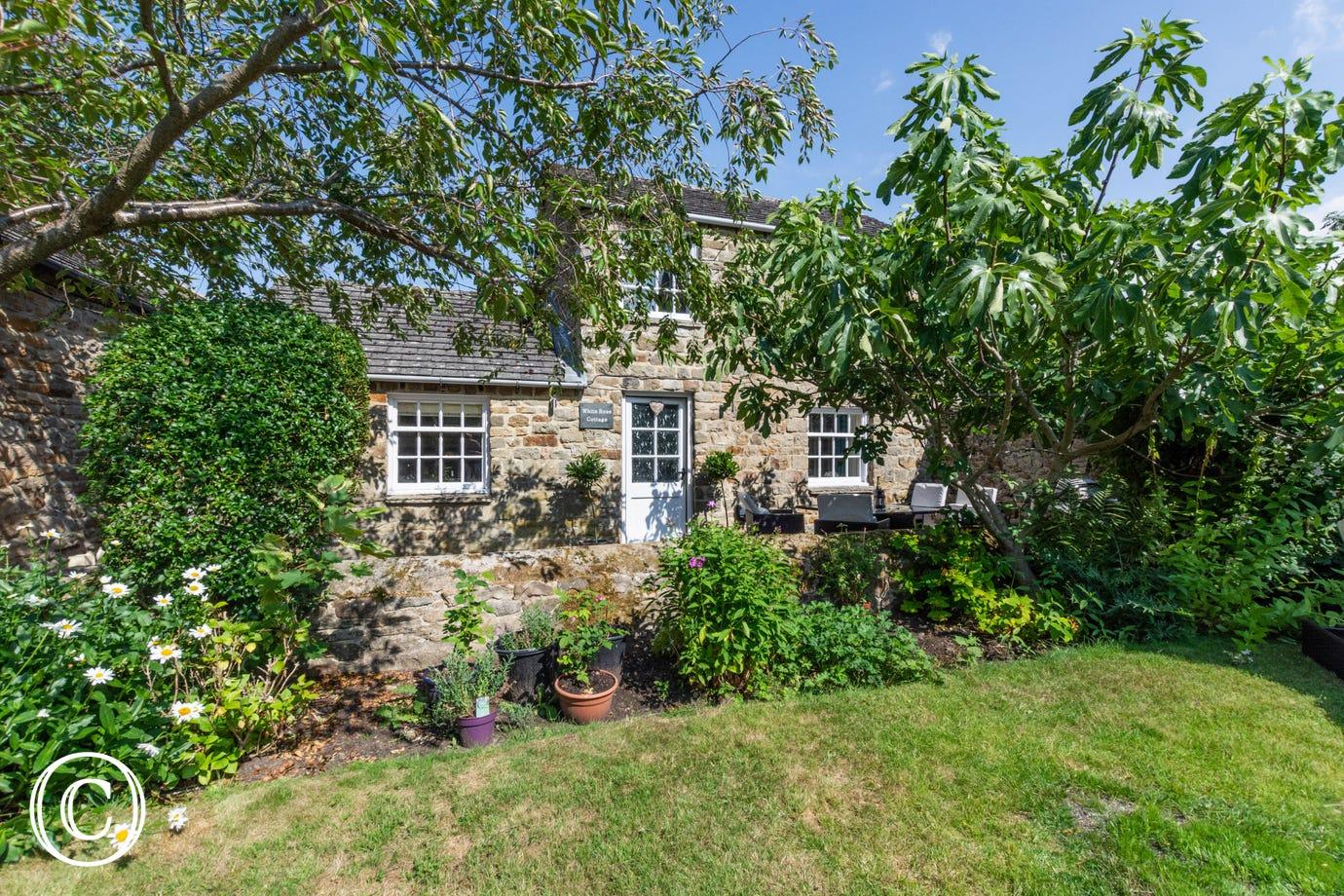 white rose cottage ds351 yorkshire holiday cottages rh yorkshireholidaycottages co uk