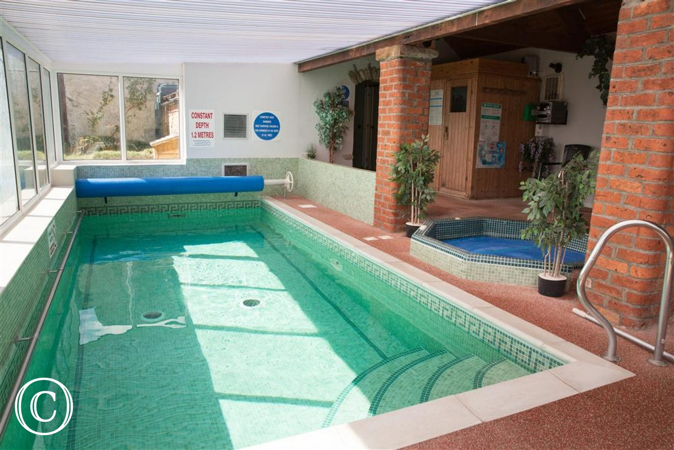 Shared Swimming Pool