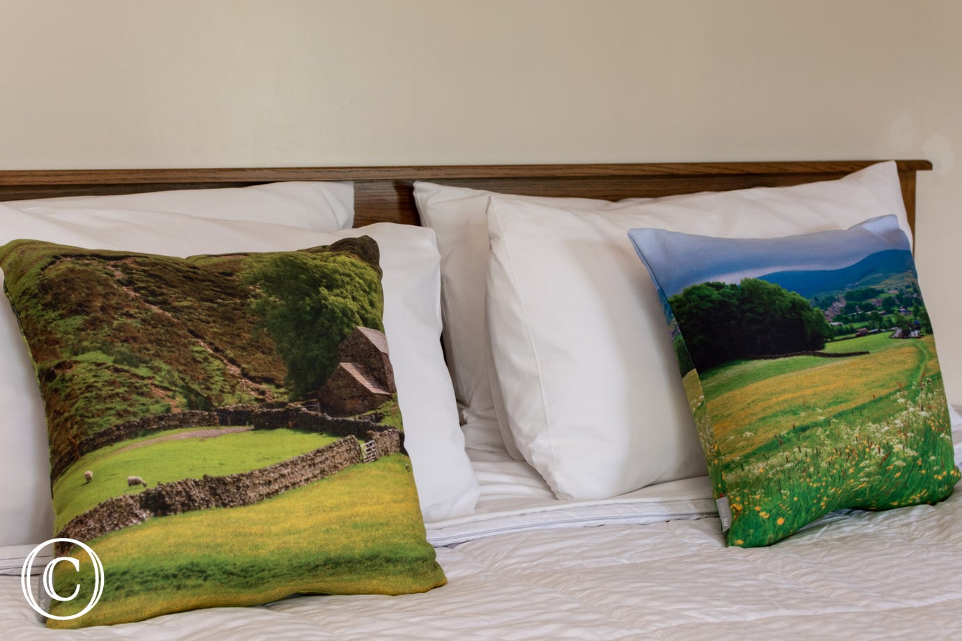 Cushions with local views