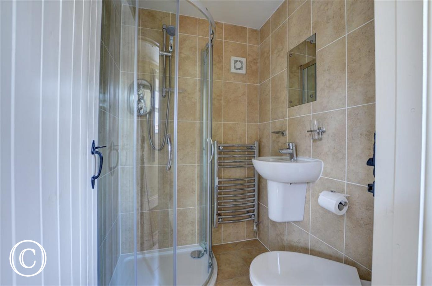 Bathroom has a walk in shower, toilet and washbasin